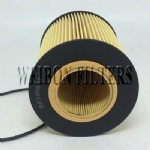 RE509672 LF16043 John Deere Oil Filter